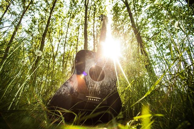 acoustic-guitar-407214_640